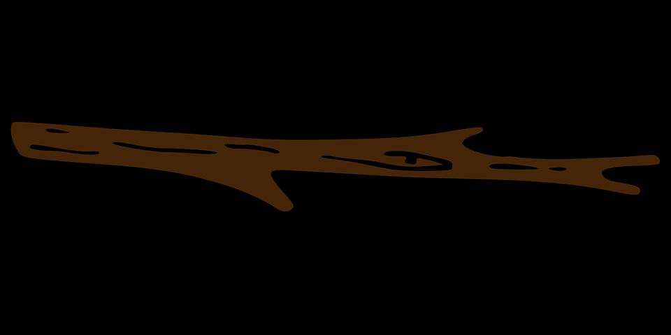 branch-308013_960_720